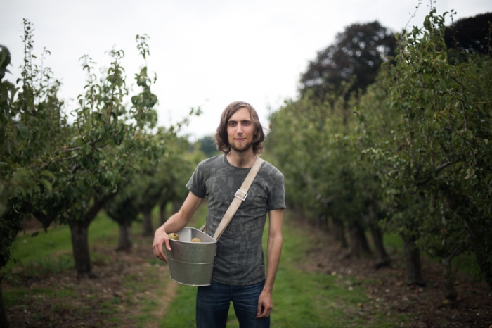 Martin, Gleaning Co-ordinator at the Gleaning Network at work in an orchard, gathering apples that would otherwise go to waste